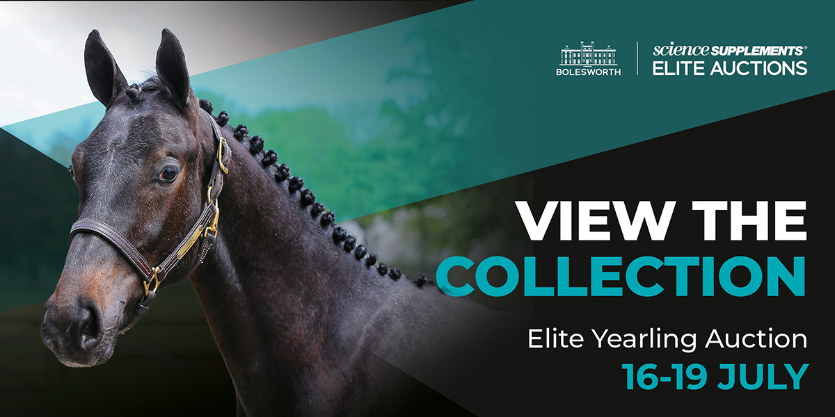 Bidding Opens for The Science Supplements Bolesworth Elite Yearling Online Auction