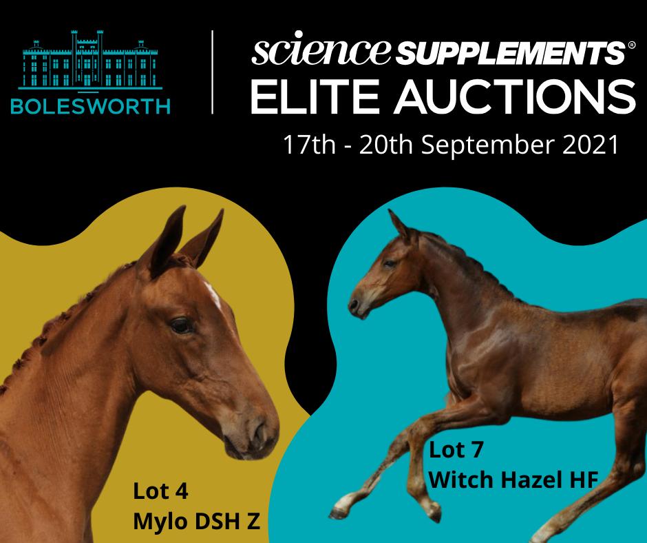 Bolesworth Elite Auctions Blog Post
